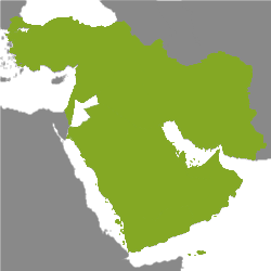 Property Middle East