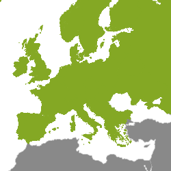 Immobilier Europe