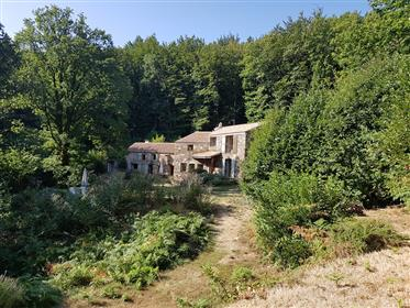 Renovated stone home on 2.5ha with pool in the heart of nature on the edge of the national park