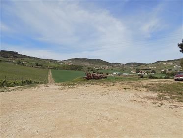 Quinta de produção de vinhos com excelente localização