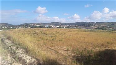 Terreno óptimo para construção de um projecto de Turismo Rur...