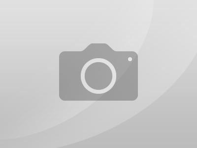 Combloux - Large Appartement face au Mont Blanc