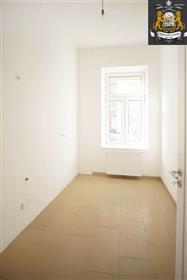 Квартира + коммерческие помещения
