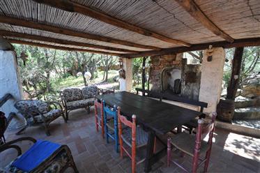Villa in vendita a Liscia di Vacca