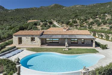 Villa con piscina pressi Porto Rotondo