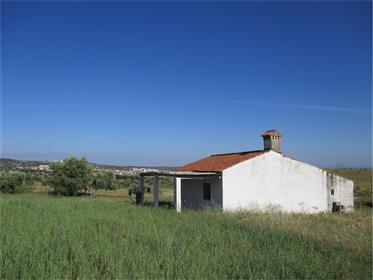 Quinta Com 1H + Moradia + Construção Rural