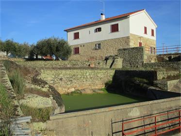 Magnifica Moradia em Granito inserida em Quinta toda murada