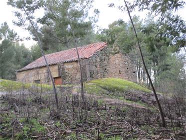 Magnifica Quinta com Construção em Pedra para recuperar