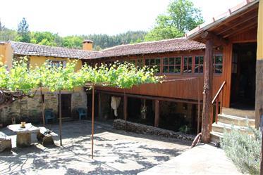 Quinta com 6 hectares - Arouca