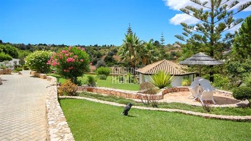 Moradia Tradicional T4 2 num Grande Terreno com Jardins Cuid...