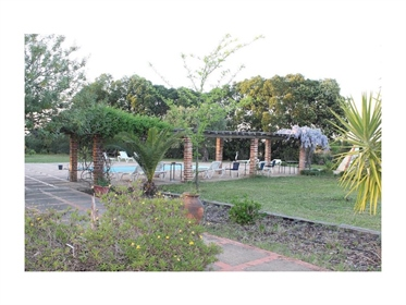 Pf16578, Herdade, Grandola