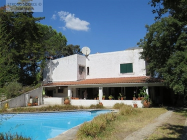Vende-Se propriedade com 1,1 ha (11000 m2) situada no parque...