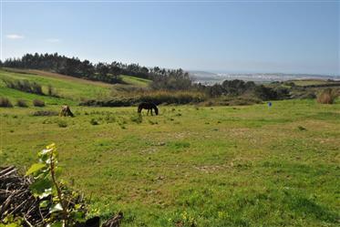 Lote de terreno c/ 1.800 m2 - a 10 min. De carro da praia de São Martinho do Porto