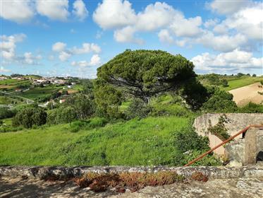 Terreno de 12.160 m2 com ruína para construção - a 10 minutos das Caldas da Rainha