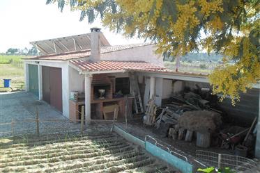 Moradia T2 e terreno de 11.720 m2 - a 6 kms de Salvaterra de Magos