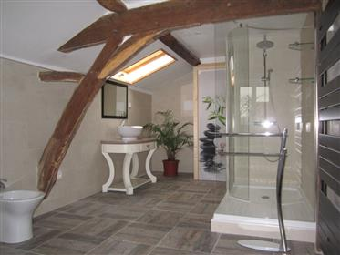 New Aquitaine – Vienne – farmhouse with two cottages
