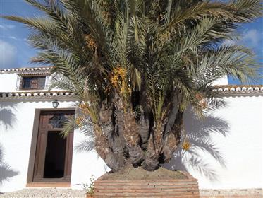 Finca na capital de Málaga, lado leste