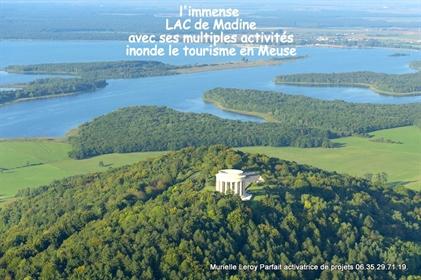 Ideal Chevaux ou Retour à la NATURE à 35 mn de Metz, je vous propose ce magnifique terrai