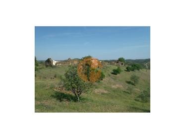 Terreno Misto com 99.760m2