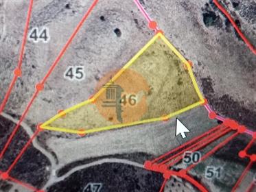 Terreno rústico de 8960m2 com uma ramada de 200m2, situado n...