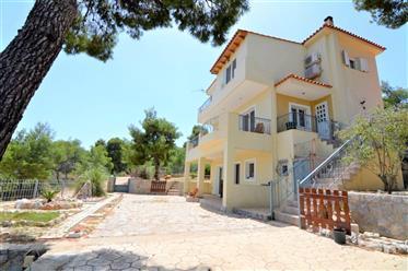 ΜΙΚΡΟ ΑΜΟΝΙ, Οίτυλο Μονοκατοικία σπίτι 165 μ2
