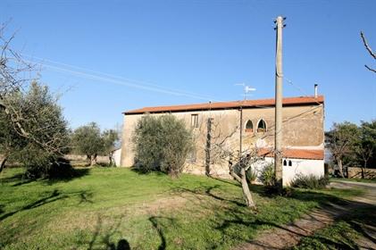 House: 340 m²