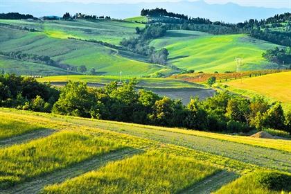 Azienda Agricola di 450 m2 a Volterra