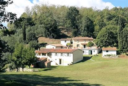 Maison/Cour de 800 m2 à Pescia
