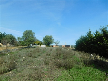 Plot of 4400 m2 in the gentle hills of Santa Barbara de Nexe, 425m2 building permission