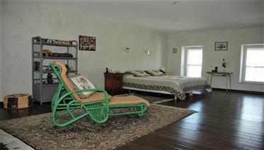 Elégante Maison de Maitre avec jardin et appartement dans village en Minervois