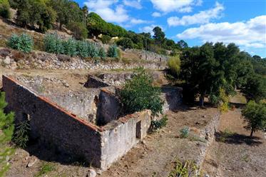 Crie a sua casa dos sonhos em Monchique