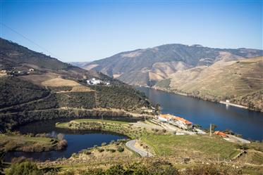 Villa bela, desanexado, Douro, Porto