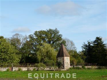 Limousin, Creuse, great breeding domain.