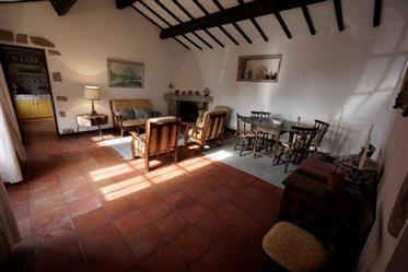 Propriedade rural com vinha de Ponte de Lima (Viana do Castelo) para venda