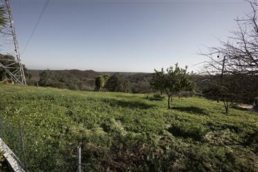 Magnifique Monte Alentejano (farme à Alentejo) à Grandola Portugal avec 22 appartements et piscine d