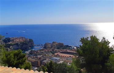 Vue mer et vue Monaco