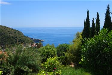 Vue mer, calme,proche Monaco, 580m²
