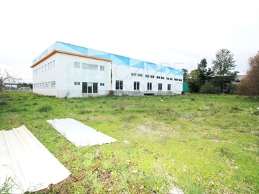 4380M2 lot warehouse in Vale do Alecrim Industrial Park, Palmela, Setubal