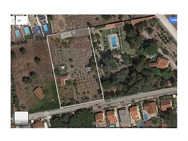 Lote de terreno em Azeitão