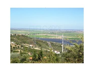 Quinta com moradia V3 com vistas panorâmicas, Lote 20.760m2, Vila Franca de Xira