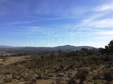 Homestead Tapadão van Santa: 13 hectare grond in Fortios, Portalegre