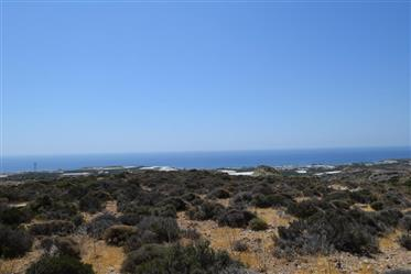 Plot of land of 70.000m2 which can build up to 920m2.