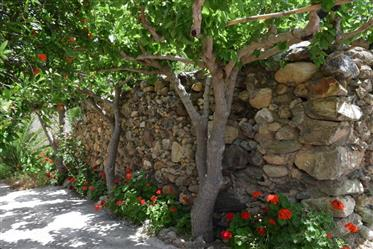 Old house for sale in Koutsouras.