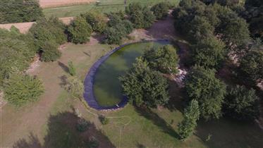Saint Paul Les Dax À 15 Minutes - Maison Neuve De 110 M² Sur 16 000 M² De Terres Avec Plan D'eau