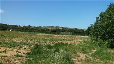 Moradia T2, com terreno, perto da Lourinhã
