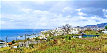Building Plot Funchal