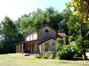 Quintinha com uma casa rústica para a Abragão Penafiel, Portugal