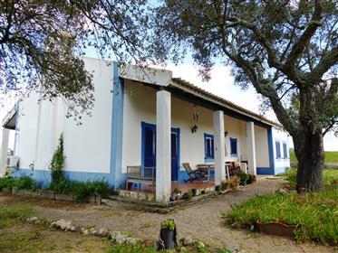 Maison de campagne, 3 chambres. Portugal, Arraiolos, Vimieiro.