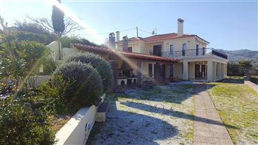 Property Aegina (Attica) : 6 houses for sale