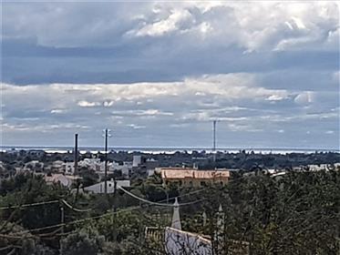 Lote de terreno com casa antiga e projecto aprovado para uma...